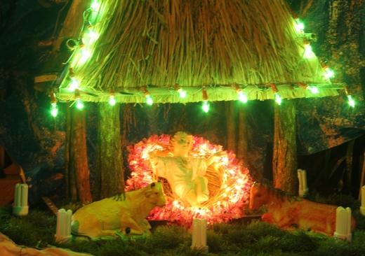 Video – Giáng SInh 2013 tại TTHH Mẹ Trà Kiệu